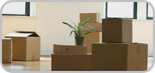 packers movers